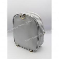 Дитячі рюкзаки 213-1 silver