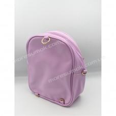 Дитячі рюкзаки 213 purple