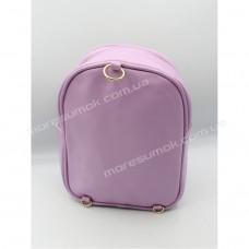 Дитячі рюкзаки 213-2 purple