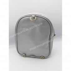 Дитячі рюкзаки 213-2 silver