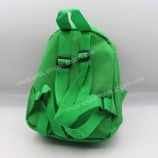 Детские рюкзаки 499 green